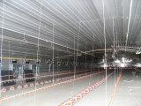 Casa de galinha clara da construção de aço com equipamentos completos das aves domésticas