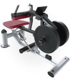 セリウムによって証明される適性装置の体操の商業二頭筋機械