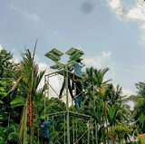 réverbère élevé de l'énergie solaire DEL de mât de la haute énergie 60W