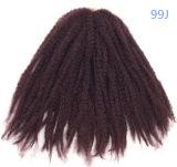 Da trança Kinky da torção do Afro da trança do cabelo de Marley da fibra de Kanekalon extensão 100% sintética do cabelo Lbh 019