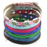 Newest Leather Pet Collar for Dogs and Cats (P-16)
