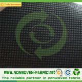 Экспорт ткани PP Spunbonded Non-Woven к Испании