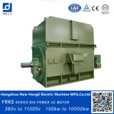 高圧電気モーター、ケージAC電気モーター