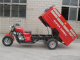 150cc, Three Wheel Motorcycle, 중국 New Style, Cargo Tricycle, Gasoline Trike, Tuk Tuk, (SY150ZH-A7)