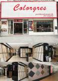 Edificio Materai, azulejo de suelo de cerámica de la nueva del diseño del azulejo 60X60/Rustic porcelana del azulejo