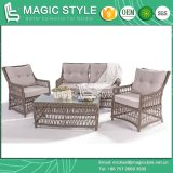 등나무 Furniture Open Weaving Sofa Set 정원 Sofa Wicker Sofa 2 시트 Sofa Rattan Sofa (Magic Style)