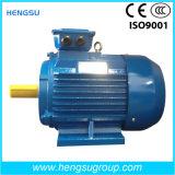 Ye2 90kw Cast Iron Three Phase AC Induction Electric Motor