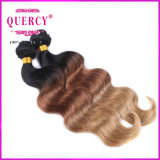 Arrival novo Highquality e Wholesale Price 3 Tone Omber Color Body Wave Hair, Malaysian 100% Hair