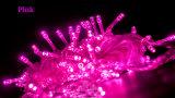 結婚式の装飾のための別のカラーLED妖精ストリングライト