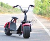 2 wielen 800 Lading 40km van Watts 120kg Elektrische Autoped