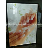 Snap Open Light Box with Acrylic LGP for Advertising