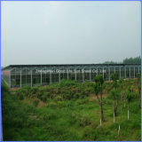 100% Bayer Virgin Material 4/6/8/10/12 mm Polycarbonate Hollow Sheet