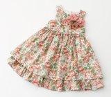 Meninas que vestem vestidos do desgaste dos miúdos da roupa das crianças em vestidos do vestido da flor