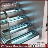 Escalera de cristal prefabricada del pasamano LED del canal U (DMS-L1015)