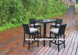 Rattan Furniture - Bar Chair e Table (BG-N010A)