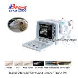 3D 4D Ultrasone klank van de Scanner van de Ultrasone klank van het Karretje Draagbare Veterinaire