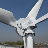 2000W максимальная ветротурбина силы 3000W с 3 лезвиями