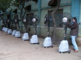 ventilador centrífugo de 65cm/de ventilador/água Fan/SAA/CE da névoa aprovações