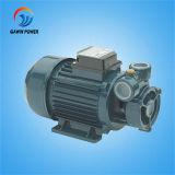 Kf/1 Kf/2 Kf/3 전기 깨끗한 물 펌프