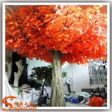 정원 훈장 외부 안을%s 인공적인 빨강 단풍나무