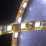 3528 LED cinta, Crystal & tubo impermeable (QC-3FRWCT-60)