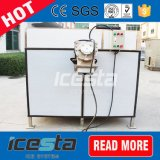 Stanza modulare del congelatore con il macchinario del ghiaccio