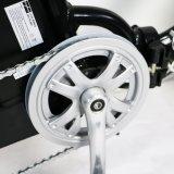 전기 자전거 Foldable 새로운 접히는 E 자전거 /Folding 전기 자전거/소형 자전거/Foldable Ebike 250W