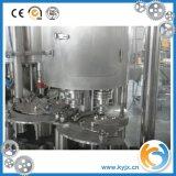 Фруктовый сок с оборудованием машины завалки газа
