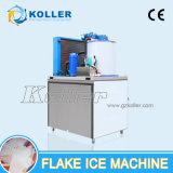 Capacidade pequena fabricante de gelo do floco de 1 tonelada/dia com o escaninho de armazenamento do gelo para peixes, carne