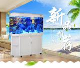 De Factorty réservoir de poissons acrylique de tête de remboursement in fine de vente directement