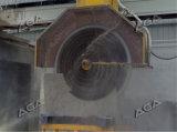 10 лезвий облицовывают автомат для резки блока для гранита/мрамора (DQ2200/2500/2800)