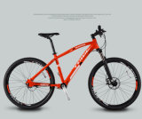 人のエアロバイクか山の自転車の製造業者