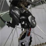 새로운 디자인 36V 도시 E 자전거