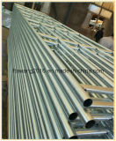Гальванизированный утюг загородки скотин временно стальной ограждая панель