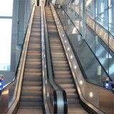 Pessoa 4500 interna do bom preço por a escada rolante do centro comercial da hora