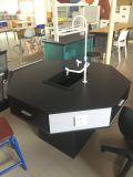 8 Seater에 의하여 주문을 받아서 만들어지는 실험실 가구 장비를 가진 소년 책상