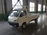 Elektrischer mobiler Transport-LKW mit dem Tragen 800-1500kg