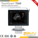Touchscan Ts60 Digital Color Ultrasound for Veterinary