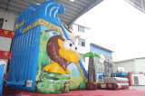 Il tema divertente del giardino zoologico gonfiabile asciuga la trasparenza per il partito di festa (CHSL651-2)