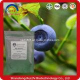 Порошок голубики ингридиента дополнения еды высокого качества с HPLC 25% антоцианина 15%by UV
