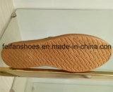 大きさ(FFZL1031-04)の良質の新しい到着の女性のキャンバスの注入の靴
