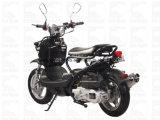 Ход диска EPA Cdi мотоцикла Zhenhua Pmz150-8 150cc Elec