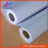 PVC materiales de impresión al aire libre de vinilo etiqueta