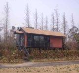 Edificio de acero vivo privado de la venta caliente