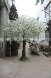 عرس زخرفة حلية اصطناعيّة [شرّي بلوسّوم] شجرة