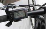 E-Bici della montagna con un pacchetto smontabile della batteria