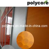 Nid d'abeilles décoratif de transmission de la lumière Panneau-Orange