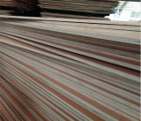 بناء إستعمال [18مّ] خشب صلد خشب رقائقيّ إلى هند سوق