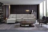 Sofà moderno del tessuto del salone della mobilia domestica impostato (HC570)