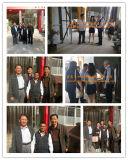 Chinesischer Schweißens-Fluss/Schweißens-Puder-Hersteller Sj101g